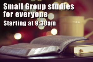 SmallGroupStudies